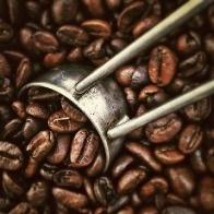 Kawa ziarnista a zdrowie