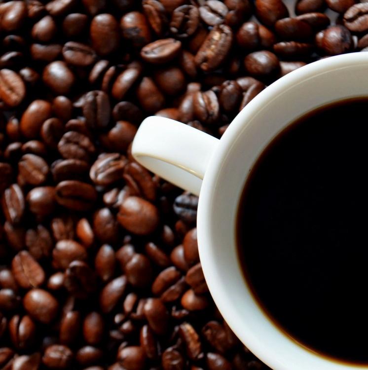 Przegląd kawy Lavazza
